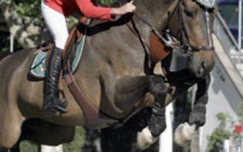 Varios CDE en el CSI2* de Madrid Horse Week