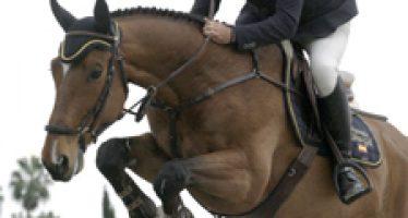 Comienzan las pruebas de caballos jóvenes del Circuito del Sol