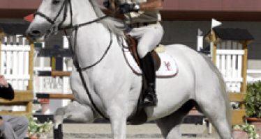 Los caballos de Yeguada Militar dominaron la primera grade