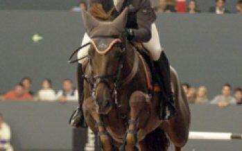 Los sementales del  Gran Premio de Madrid Horse Week
