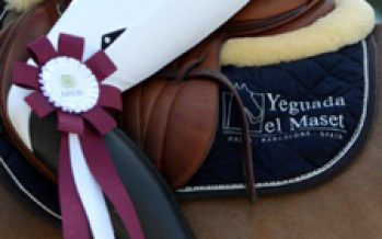 Cinco caballos de Yeguada Del Maset en las pruebas de caballos jóvenes del CES