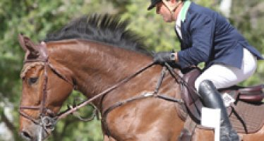 """""""Docecalles"""" puso la guinda a su buen concurso en El Pinar ganando el Gran Premio"""