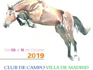 Cartel de la Final ANCADES 2019