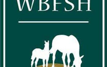 """""""Asís"""", mejor CDE en el ranking WBFSH"""