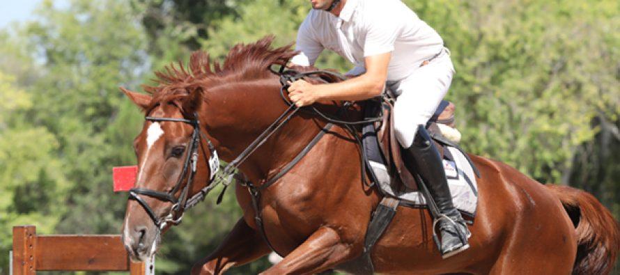 """""""Cassandra H"""", en las pruebas de caballos jóvenes del MET"""