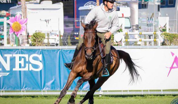 Última jornada de esta semana de caballos jóvenes