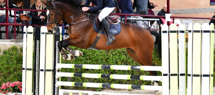 Los caballos de El Maset destacan en el Polo
