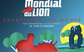 """Buen resultado de la CDE """"Gallega HSM"""" en el Mondial de Lion"""